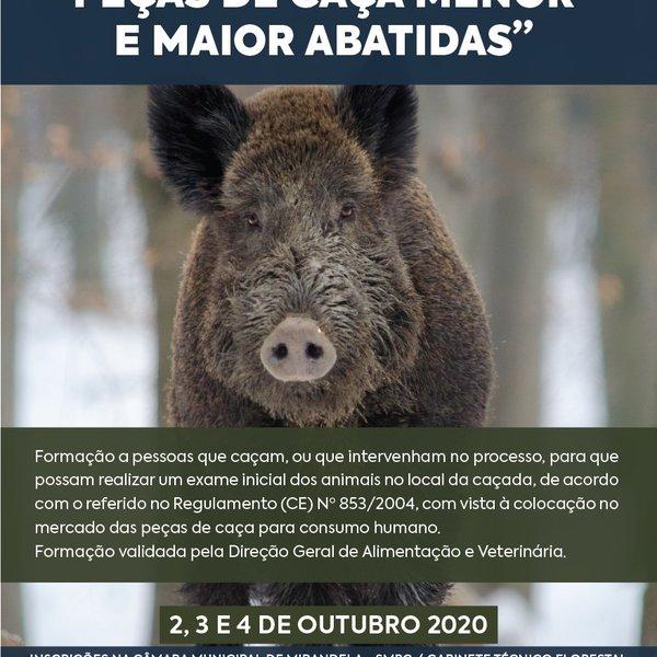 curso_caca_2020_01
